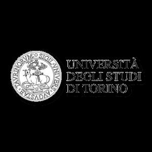 Universita degli studi torino
